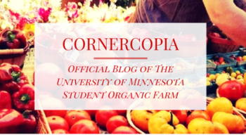 Cornercopia blog home page image