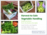 Vegetable Handling Front Cover
